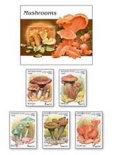 KASAFG98012 Mushrooms 5 STAMPS CANCELED AND BLOCK MNH AFGANISTAN 1998