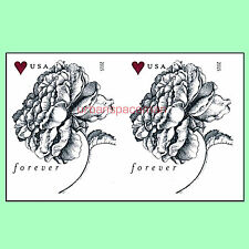 4959a Vintage Rose Forever Rate Imperf Pair from Press Sheet No Die Cuts