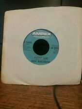JESSE WINCHESTER Yankee Lady / That's The Touch I Like AMPEX 11004 45 rpm ROCK