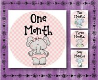 "Baby Elephant - PINK - Baby Month 1-12 - Milestone Stickers - 2.5"" Round Glossy"