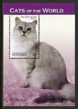 Cat Domestic Animals Micronesia MNH S/S stamp 2007