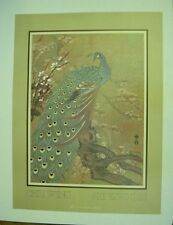 """Vintage poster by """"Chiu Weng"""" of peacock  Art Expo 81 S.F."""