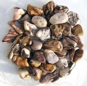 Mokka-Jaspis, gestreifter Jaspis, 200 g. Trommelsteine (1 kg = 34,50 EUR)