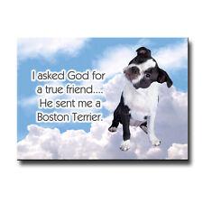 Boston Terrier True Friend From God Fridge Magnet No 3 Puppy