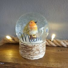 Personalised Robin Winter Christmas Snow Globe