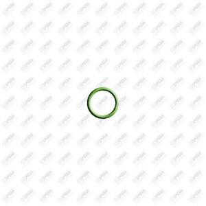 Santech 20 Pk Green HNBR O-Ring - #12 (3/4) Dual