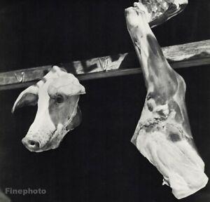1939 Vintage Rolf Tietgens Butcher Meat Pig Hog Chef Farm Kitchen Food Photo Art