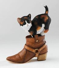 Country Artists Chloe Cat in Boot 06690