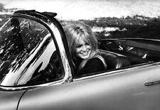 8x10 Print Brigitte Bardot #BB02
