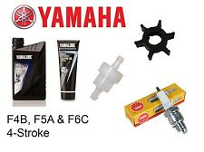 Yamaha F4B / F5A / F6C 4-Stroke Outboard Service Kit