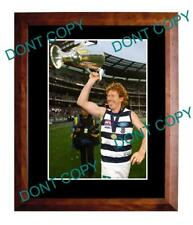 CAMERON LING GEELONG CATS FC 2011 PREMIERS A3 PHOTO 1