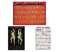 Martial Arts Posters, Karate Striking Basic Nunchaku Kata Stretches Poster
