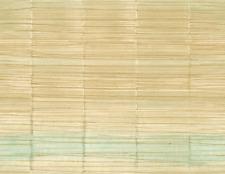 Bamboo Honey Nude Cream Ombre Green Raised Texture Double Rolls