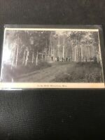 Postcard In The Bluff Minnedosa Manitoba Real Photo 1907 G01