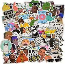 106pcs Meme stickers for laptop luggage sktateboard mug USA Shipped high quality