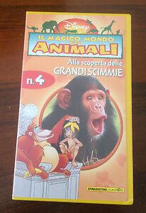 CS10> VHS DISNEY - IL MAGICO MONDO DEGLI ANIMALI - N. 4 GRANDI SCIMMIE