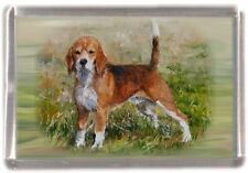 Beagle Dog Fridge Magnet No 1 by Starprint
