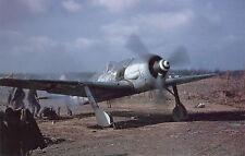 FOCKE WULF Fw 190 A-8 (Spannweite 2025mm). Jagdflugzeug. Modellbauplan RC