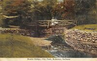 Kokomo Indiana~City Park Rustic Bridge~Victorian Ladies~1910 Postcard