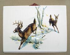 Vintage 1950s print Deer in the Daisies by Joan Pripps