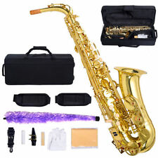 New Professional Eb Alto Sax Saxophone Paint Gold with Carry Case Accessories