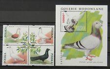 - Polen Poland 1994 Mi. Nr. 3511-3514, Bl. 126 ** postfrisch MNH Tauben pigeons