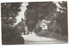 WILTSHIRE - AMESBURY, COTTAGES ON STONEHENGE ROAD  1916 Postcard