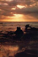 AUSTRALIA BEACH at SUNSET POSTCARD NEW -UNUSED