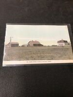 Postcard Mr Thomas Ingram Grisworld Manitoba Canada Farm Hand Tinted C01