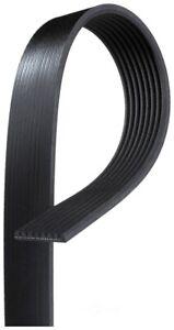 Serpentine Belt fits 2007 Workhorse W42  GATES