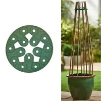 Cane Holder Garden Plant Stick Grip Support Holes Flowers Bamboo Canes Beans Pea