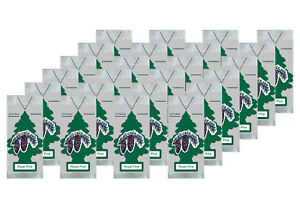 Little Trees Hanging Car and Home Air Freshener, Royal Pine Scent - Pack of 24