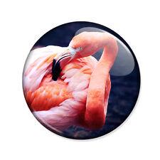 Badge FLAMAND ROSE Pink Flamingo nature oiseau bird pop hipster retro pins Ø25mm