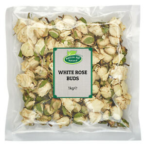 White Rose Buds - Free UK Delivery
