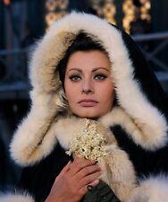 Sophia Loren -The Fall of the Roman Empire (1964)   -  8 1/2 X 11