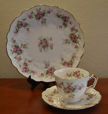 Vintage Aynsley Grotto Rose Trio Tea Cup Saucer Plate England Bone China 1960's