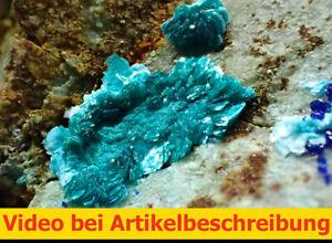 8147 Tyrolite Azurite Olivenite 5*8*3 cm Tangdan Mine China 2021 MOVIE