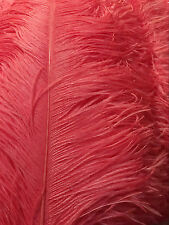 5 Pieces Coral/Peach Ostrich Feathers 22-24 inches 5 Pieces (Ga, Usa)
