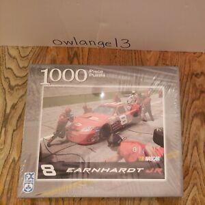 Dale Earnhardt Jr Nascar Puzzle 1000 Pieces FX Schmid