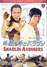 Shaolin Avengers AKA The Invincible Kung Fu Brothers-- Hong Kong RARE Kung Fu