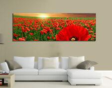 Quadri Moderni tela 150x50 Prato Natura Papaveri Rossi Fiori Red Tramonto Living