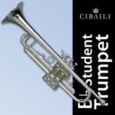 Silver Finish Brass Instruments