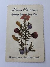 Vintage Christmas Card With Pressed Flowers From The Holy Land