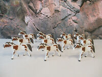 ( J 13 ) 11 Pferde Pinto weiß/braun Western ACW Ritter Reiterhof
