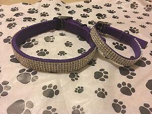 "Purple Swarovski Crystal Rhinestone Dog Collar Fits 10-14"" Necks"