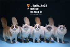 Mr.Z 1/6 Ragdoll Figure Cute Cat Pet Animal Model Resin Collector Decoration Toy