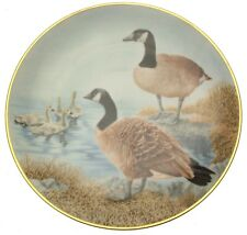 Water Bird Sumner Collection Canada Goose CP803