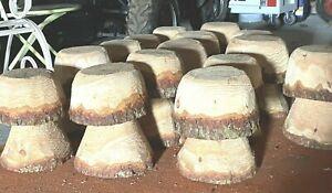WOOD  MUSHROOM  STOOL Made in Cumbria   CHILD GARDEN SEAT  🍄  🍄  🍄 👈