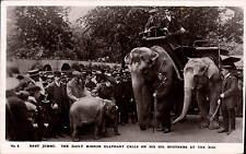 Regents Park. Baby Jumbo, Daily Mirror Elephant & His Big Brothers at Zoo # 4.