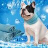 Kühlendes Halstuch für Hunde Kühlhalsband Ideal für Sommer Bandana Klein Groß